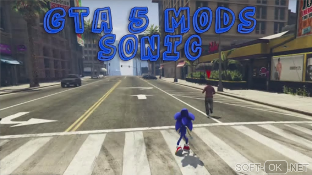 "Screenshot №1 ""Your Sonic GTA Mods Run Game"""