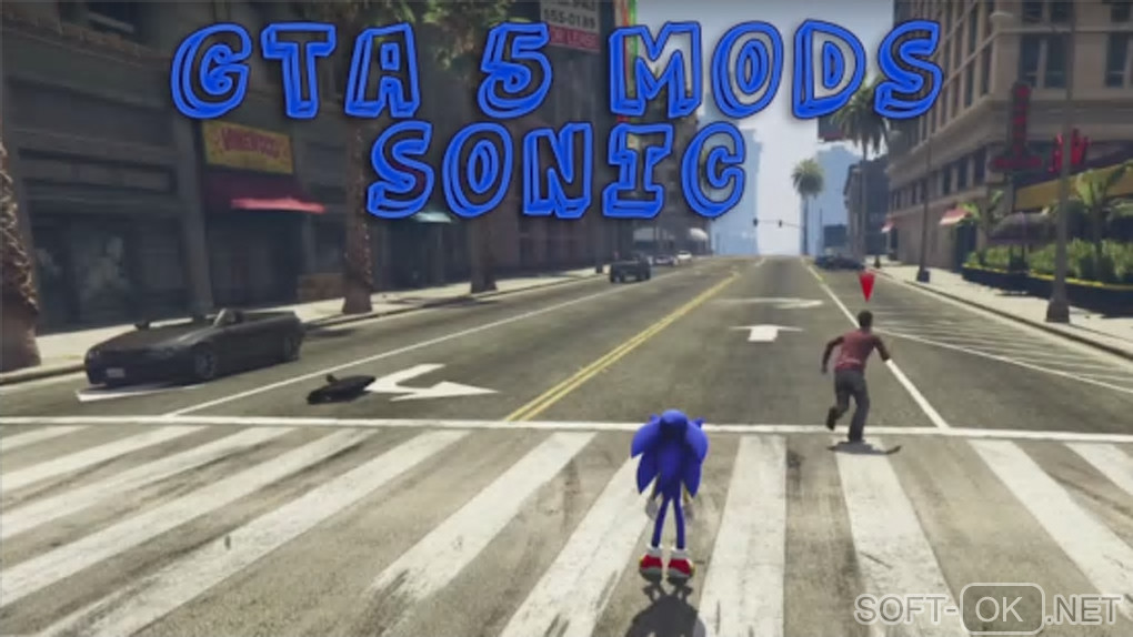 "Screenshot №2 ""Your Sonic GTA Mods Run Game"""