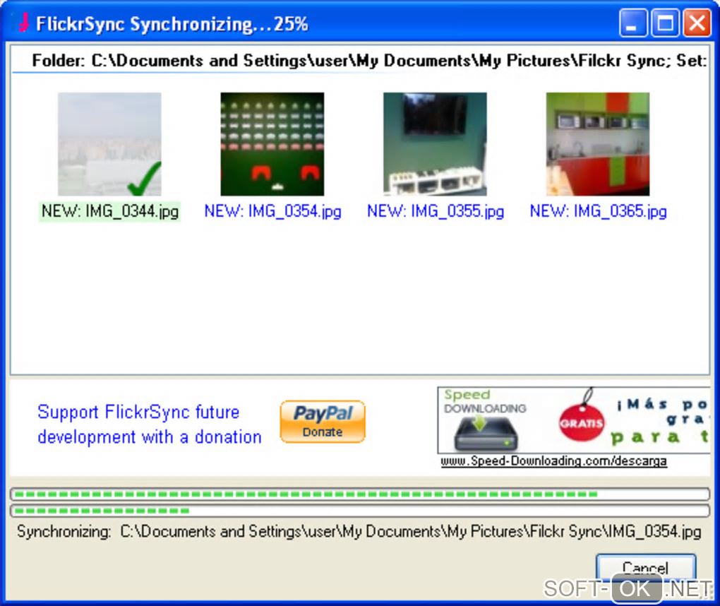 "The appearance ""FlickrSync"""