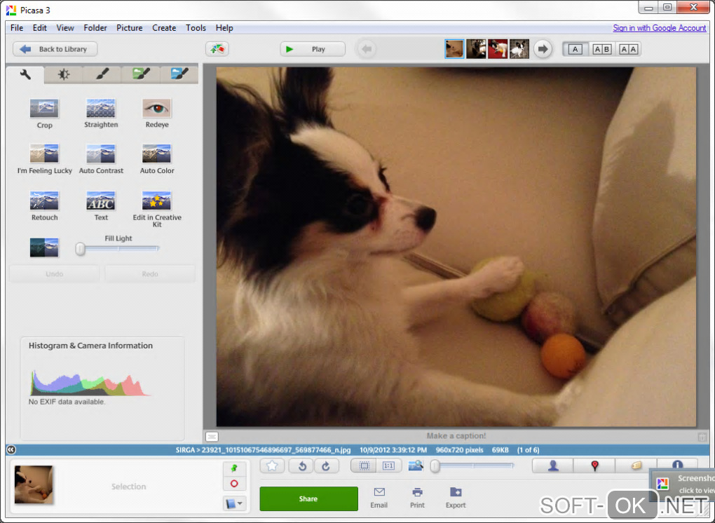 "Screenshot №1 ""Picasa"""
