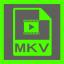 Shining Free MKV Converter